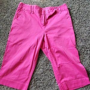Cato hot pink capris . 18W
